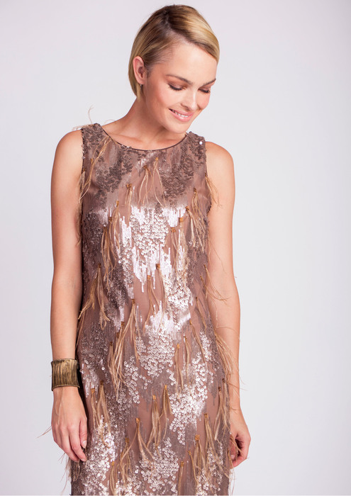 Short embroidered tulle dress